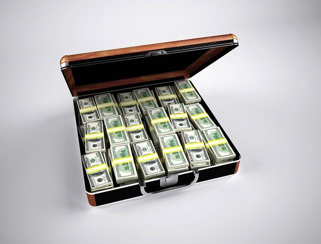 balíčky bankovek v kufru