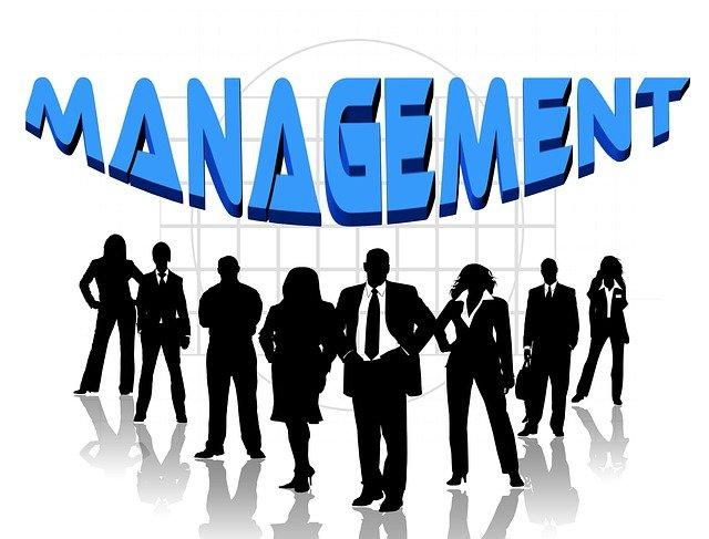 skupina manažerů